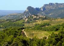 Secrets de vin au coeur des Dentelles de (...)