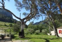 Domaine de Cassan Provence Fenouillet