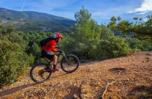 Bedoin - Le Rat Mountain Bike Trail