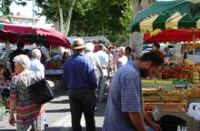Outstanding Weekly Market at Carpentras