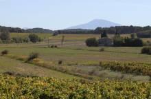 Around the Uchaux Hills