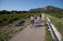 Circuit Vélo - Les Vignes Comtadines
