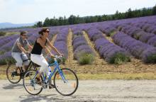Circuit Vélo - Le Plateau de Sault