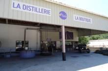 Distillerie de Lavande & Plantes Aromatiques - Les Agnels