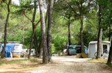 Camping Arc en Ciel