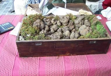 Marché aux Truffes d'Hiver de Carpentras
