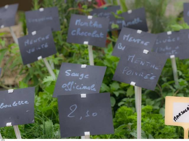 Bauernmarkt in Velleron ©Coquard M.