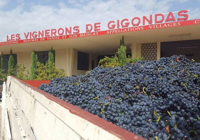 Gigondas Cellars