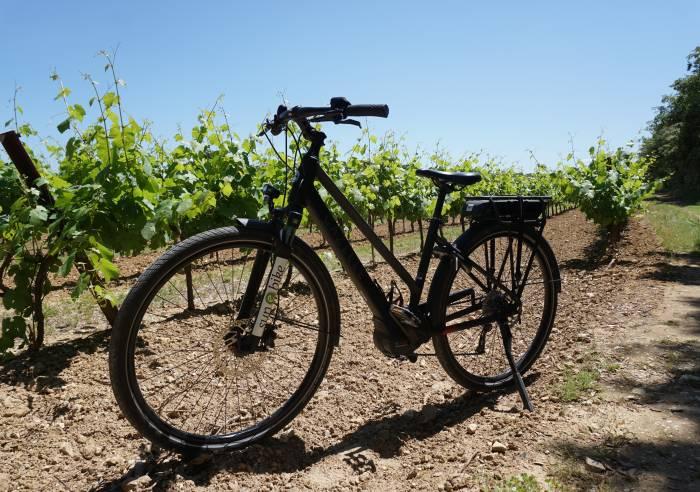 Sun E Bike Transport De Bagages Vaison La Romaine La