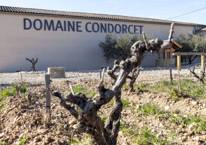 Animations autour du vin pour les groupes au Domaine Condorcet