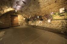 Truffle and wine museum