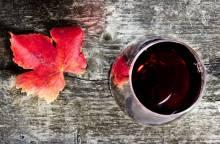 Domaine Julien de l'Embisque