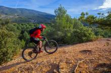 Bedoin - Le Rat Mountain Bike Trail