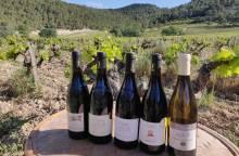 Domaine de Cassan