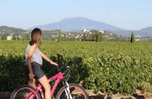 Touring the Côtes du Rhône by bike