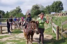 Centre équestre ''Les cavaliers de la Louvière''