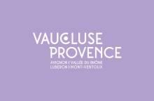 Pique-nique vigneron en combi VW au cœur des Dentelles avec le Domaine de la Tourade