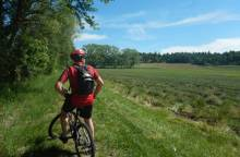 Terre de lavande - Mountain Bike Trail No 8
