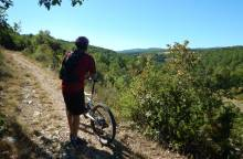 Sault - From Sault to Brouville - Mountain (...)