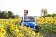 Oh My Deuche, 2CV rentals - Provence excursions