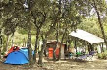 Camping Municipal Les Chalottes