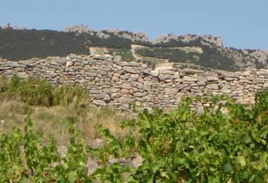 Circuit Pédestre : L'Oppidum Gallo-Romain