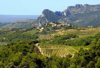 Secrets de vin au coeur des Dentelles de Montmirail