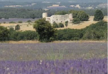 Chambres d'hôtes- Château de la Gabelle