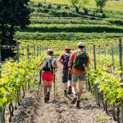 Hiking around the Dentelles with Gigondas LaCave