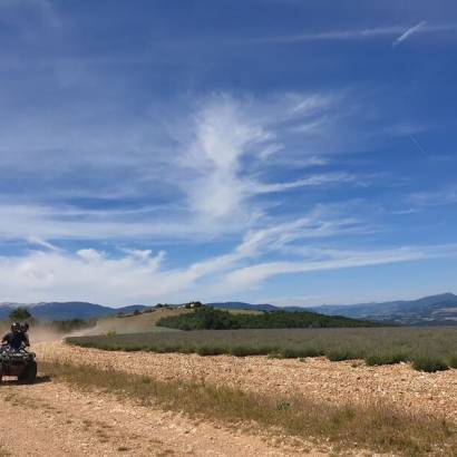 Quad-bike rental with Terr'aventure