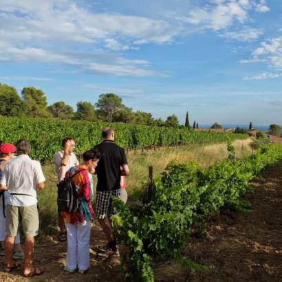 Guided tour of Clos de Caveau
