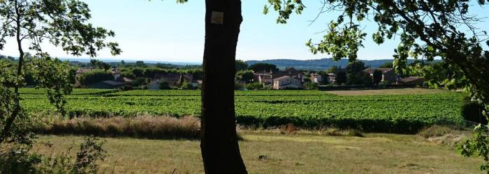 VTT n°40 - Ubac du Petit Luberon
