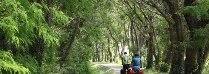 Circuit vélo : D'Orange à Caderousse, de la cité romaine à la découverte de l'Ile verte du Rhône.