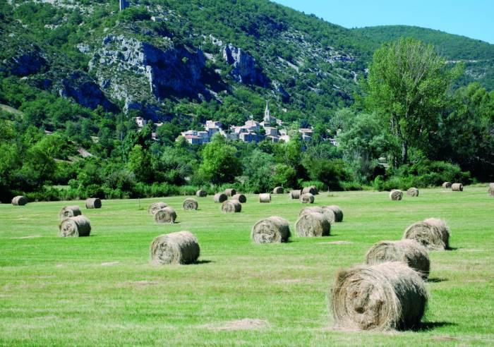 Le village de Monieux