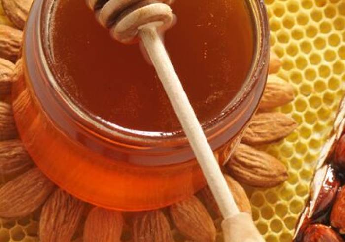 Silvain - Farmers and Nougat Makers