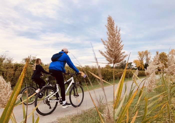 isle sur la sorgues fietsroute tussen wijngaarden en boomgaarden vakantie in de provence. Black Bedroom Furniture Sets. Home Design Ideas