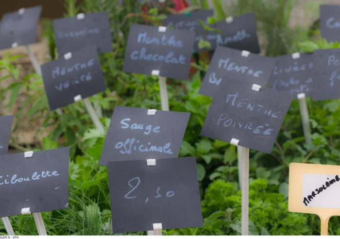 Outstanding Farmers' Market of Velleron