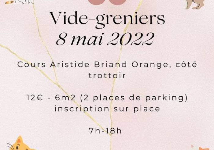 Vide-grenier Chat Sans Toi