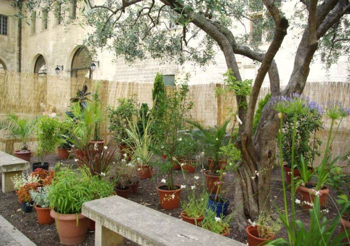 Ceccano Library Gardens - Visits, Monuments, Museums in Provence