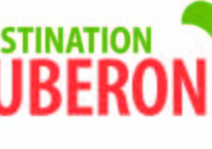 Service Groupe de l'Office de Tourisme Luberon Coeur de Provence