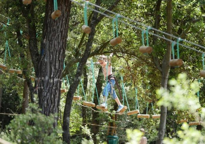 Forest Sensation Treetop Adventures