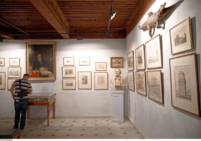Art History Museum
