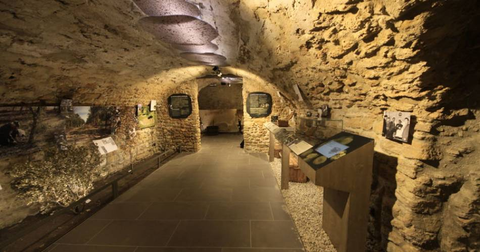 Truffle and wine museum@Muriel Pellegrin