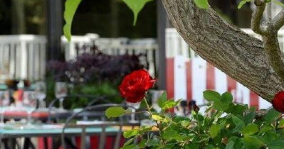 Ibis Styles Avignon Sud@©librededroit