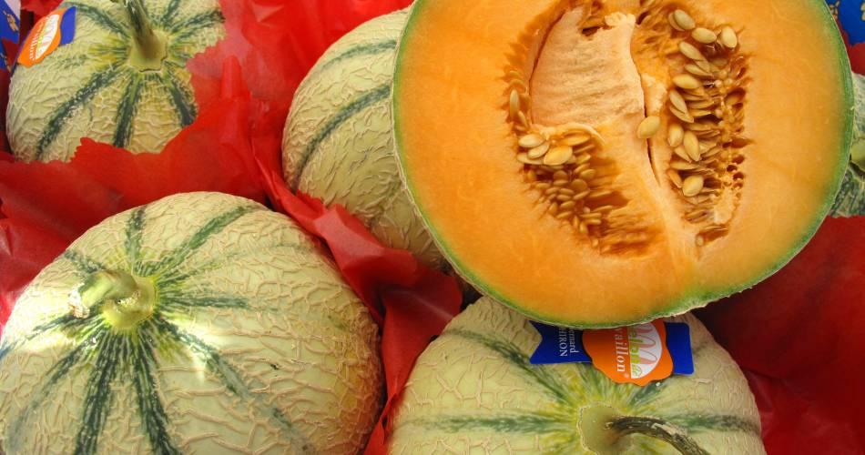 Avondmarkt voor de producenten@Mairie de Cavaillon