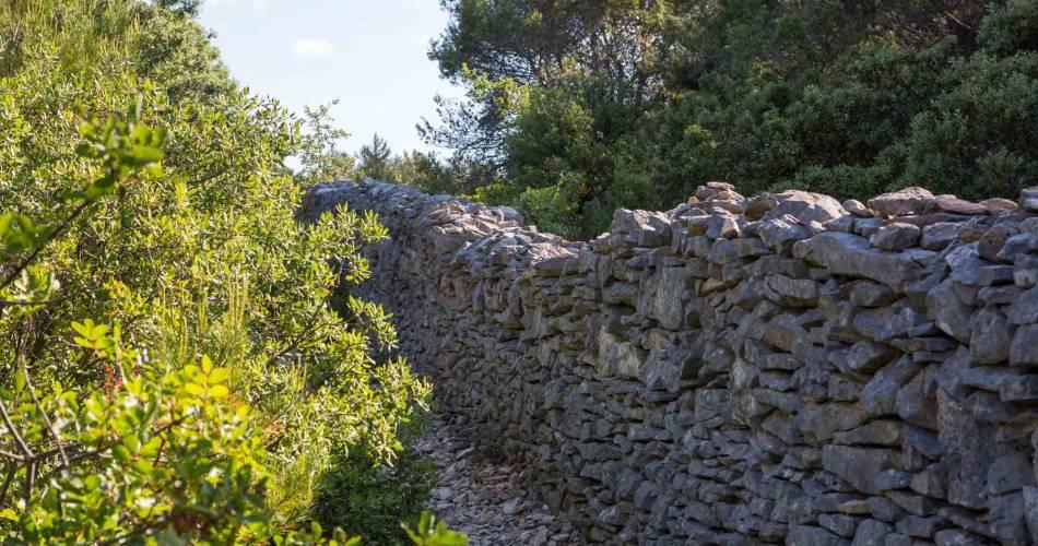 Le Mur de la Peste@OTLMV_P.Giraud