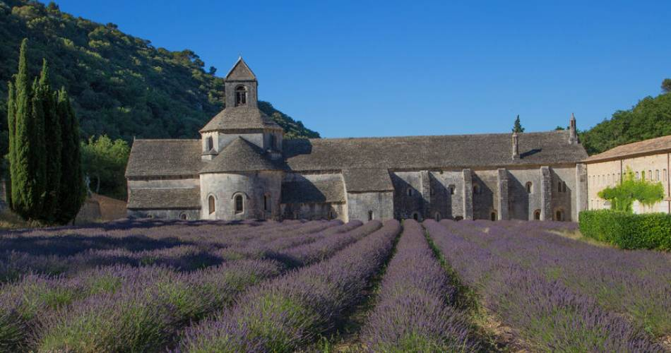 Abtei Notre-Dame de Sénanque@Coll.VPA / A. Hocquel