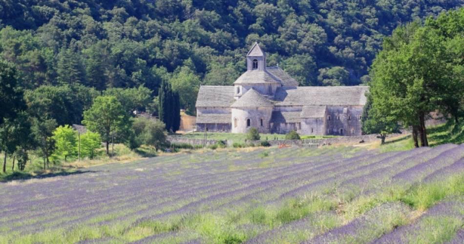 Abtei Notre-Dame de Sénanque@Droits gérés A. Hocquel / Coll. ADT