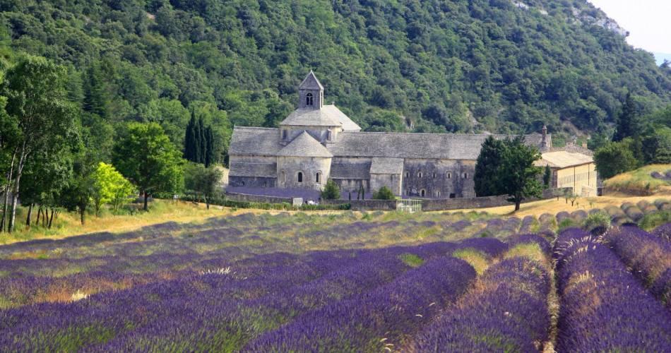 Abtei Notre-Dame de Sénanque@Droits gérés A. Hocquel / Collect ADT
