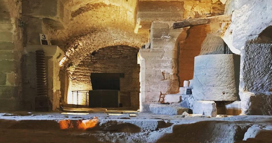 Saint-Firmin Palace Gardens and Cellars@Caves St Firmin